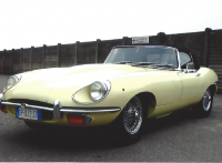Jaguar _fronte
