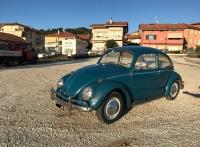 maggiolino blu-2